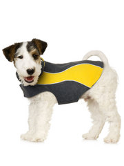 Kakadu Pet Explorer Double Fleece, in Colour Sun