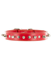 Kakadu Pet Spike Studded Leather Collar