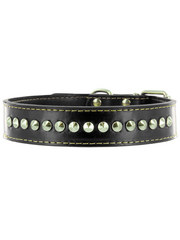 Kakadu Pet Buster Studded Leather Collar